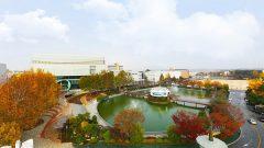 Du học Hàn Quốc đại học Wonkwang